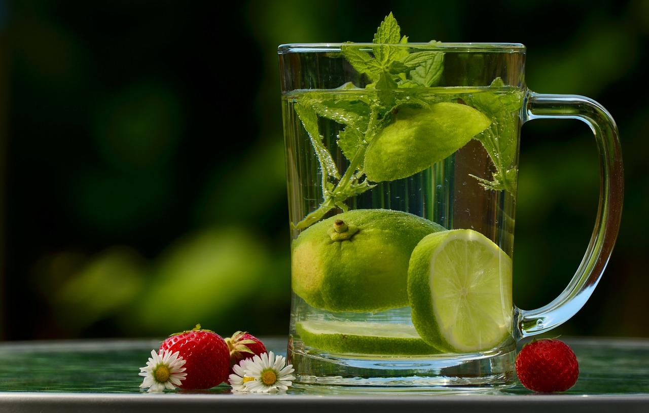 Leckeres grünes Detox-Getränk für die Fettverbrennung - Der Food-Wachund