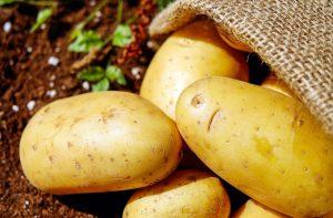 Weiße Rote Gelbe Oder Süßkartoffeln Welche Kartoffel Eignet Sich